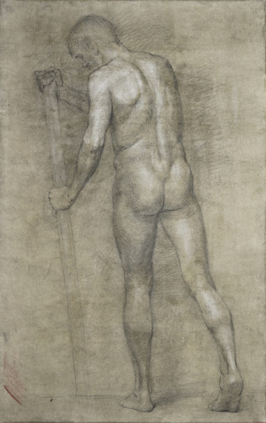 Male nude. Study drawing